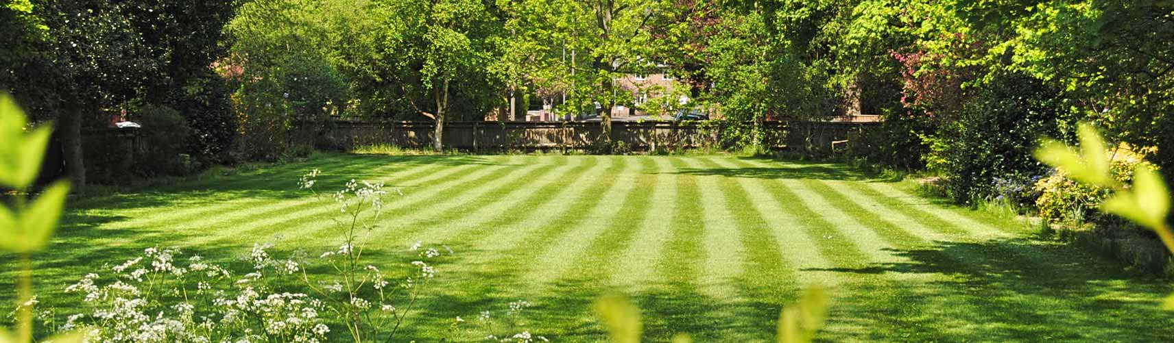 Washington Landscaping Company, Landscaper and Lawn Care Services